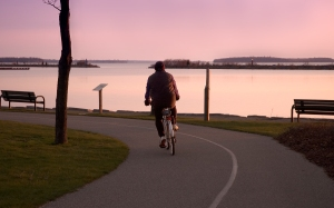 Bicycle rider in a pink dawn.