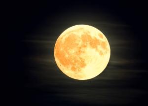 Orange Moon Blank