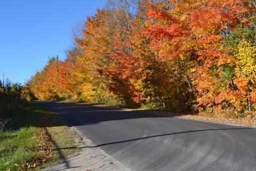 Rural roadside, Thanksgiving Weekend in Canada