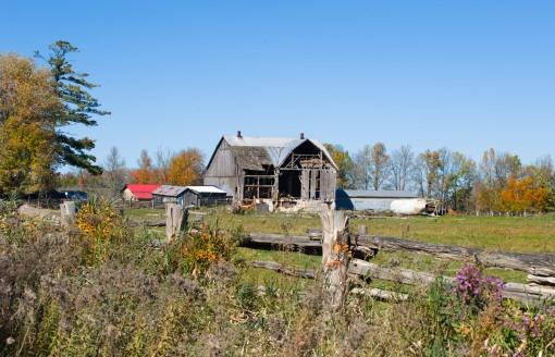 A local farm in Autumn - Orillia, Ontario (Can.) - fall, autum, barn